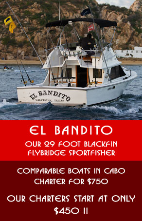 Charter Fishing Boat for $450 Full Day, Cabo San Lucas