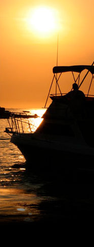 Charter fishing rates in Cabo San Lucas