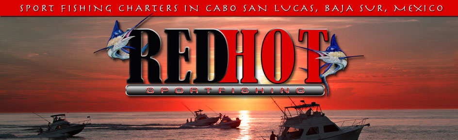 Cabo San Lucas Sportfishing Charters, Red Hot
